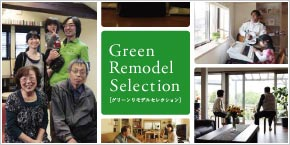 Green Remodel Selection